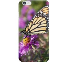 Monarch Butterfly, Purple Flower iPhone Case/Skin