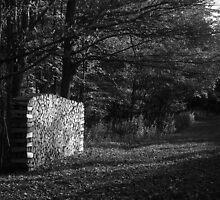 Early Autumn by Mark  Reep