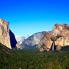 Yosemite Valley Vista by Tamara Valjean