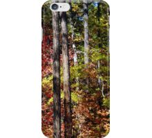 Fourth of July Canyon iPhone Case/Skin