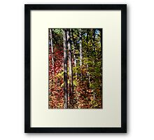 Fourth of July Canyon Framed Print