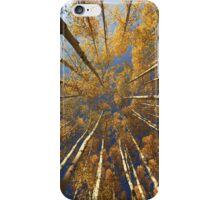 Kebler Pass Aspens II....iPhone case iPhone Case/Skin