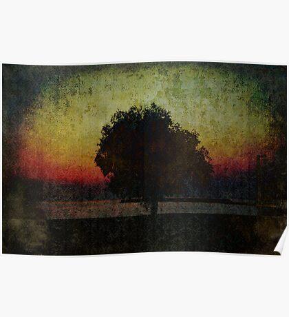 Sunset. Tree. Sea. Poster