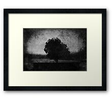 Tree. Sea. Black. White. Framed Print