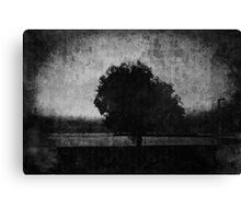 Tree. Sea. Black. White. Canvas Print
