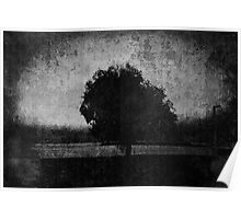 Tree. Sea. Black. White. Poster