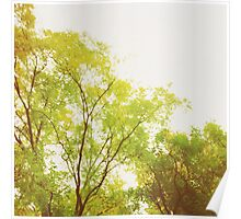 Lime Coloured Tree Poster