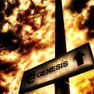 A Sign of Biblical Proportions by Den McKervey