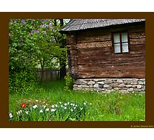 flowers,grass,wood Photographic Print