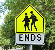 School Zone Sign by rhamm