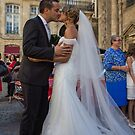 France. Bordeaux. Bride and Groom. Kiss. by vadim19