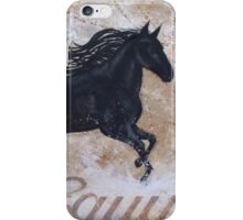 Water Dance iPhone Case/Skin