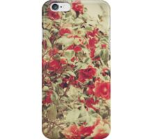 Love Is All Around iPhone Case iPhone Case/Skin