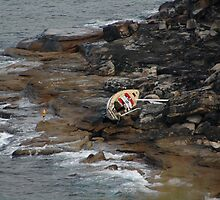 Shipwreck Yacht, Spit To Manly Walk, 2009 by muz2142