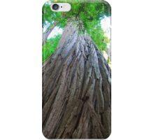 Big Red Woods iPhone Case/Skin
