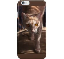 Raymond Shadow Seeker - iPhone case iPhone Case/Skin