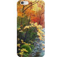 Oconaluftee River iPhone Case/Skin