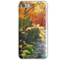 Oconaluftee River iPhone Case/Skin