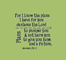 For I know the Plans Bible Verse by motivateme
