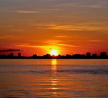 Miami Sunrise Case Art for iPhone by Bill Wetmore