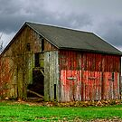 Old Farm by Monte Morton
