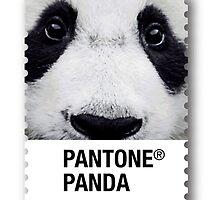 pantone panda by vinpez