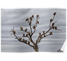 The Answer To How Many Vultures Can Sit On a Tree is... Poster