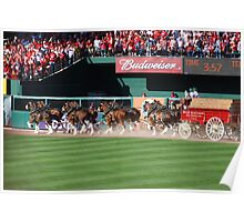 Budweiser Clydesdale 8 Horse Hitch Poster