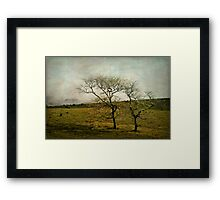 bleak and cold on the mountain top Framed Print