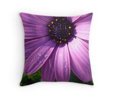 Daisy from my garden Throw Pillow