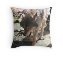 Prowling Wolf Throw Pillow