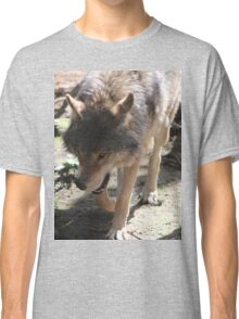 Prowling Wolf Classic T-Shirt