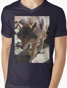 Prowling Wolf Mens V-Neck T-Shirt