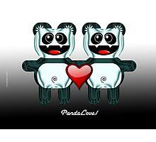 PANDA LOVE Photographic Print