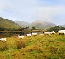 A Morning at Kilchurn by peaky40