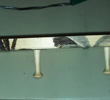 Woodburning Palm Trees On A Wood Hanger by Bearie23