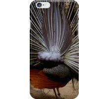 Peacock's back for iPhone iPhone Case/Skin
