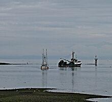Ebb Tide by Gail Bridger
