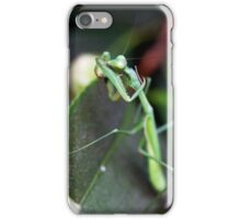 Mantis Bath time - iPhone case iPhone Case/Skin