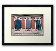 Fake and real ones Framed Print