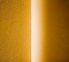 272/365 by Tom Wachtel