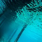 Underwater view of a Pontoon by Sami Sarkis
