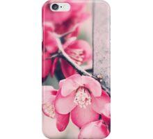 A delicate Spring - iPhone case iPhone Case/Skin