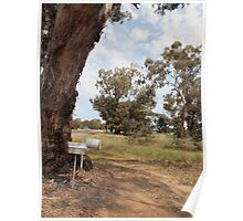 Tree Mail box Poster