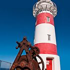 Cape Palliser Lighthouse (iP4) by Werner Padarin