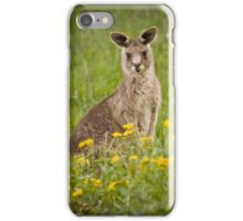 kangaroo iPhone cover iPhone Case/Skin