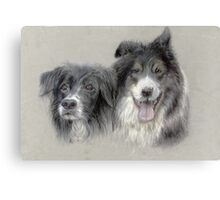 bess and bob border collies Canvas Print