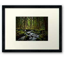 On It's Own Time Framed Print