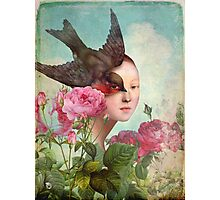 The Silent Garden Photographic Print