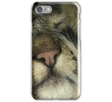 Tabby Cat Phone Case Cover iPhone Case/Skin